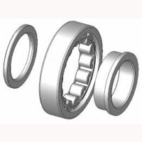 Cylindrical type NUP bearing