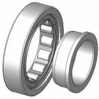 Cylindrical type NJ bearing